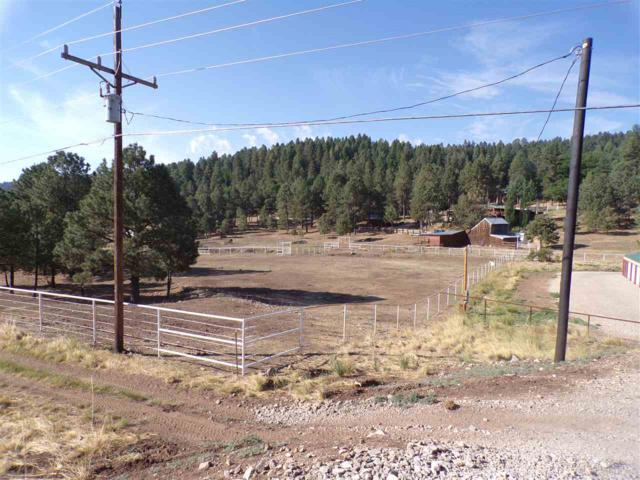 2506 Us Hwy 82, Mayhill, NM 88339 (MLS #158820) :: Assist-2-Sell Buyers and Sellers Preferred Realty