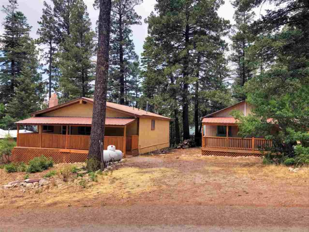 819 Corona Ave #1, Cloudcroft, NM 88317 (MLS #158844) :: Assist-2-Sell Buyers and Sellers Preferred Realty
