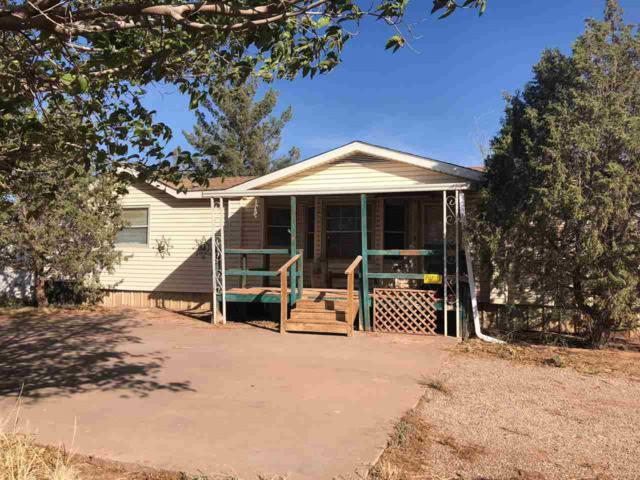 5 Khj Rd, Alamogordo, NM 88310 (MLS #158869) :: Assist-2-Sell Buyers and Sellers Preferred Realty