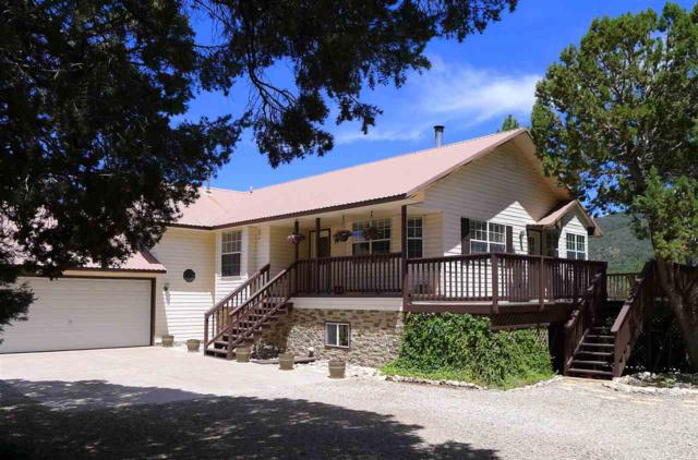 1 Wild Turkey Cir, High Rolls Mountain Park, NM 88325 (MLS #158886) :: Assist-2-Sell Buyers and Sellers Preferred Realty