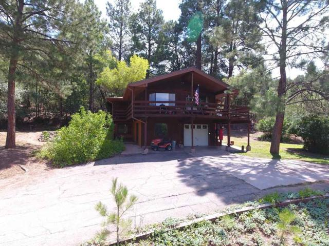 158 Haynes Canyon Rd, La Luz, NM 88337 (MLS #158937) :: Assist-2-Sell Buyers and Sellers Preferred Realty