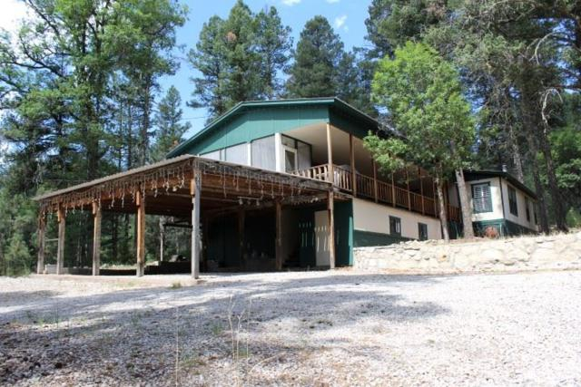18 Cour De Leon, Mayhill, NM 88339 (MLS #158944) :: Assist-2-Sell Buyers and Sellers Preferred Realty