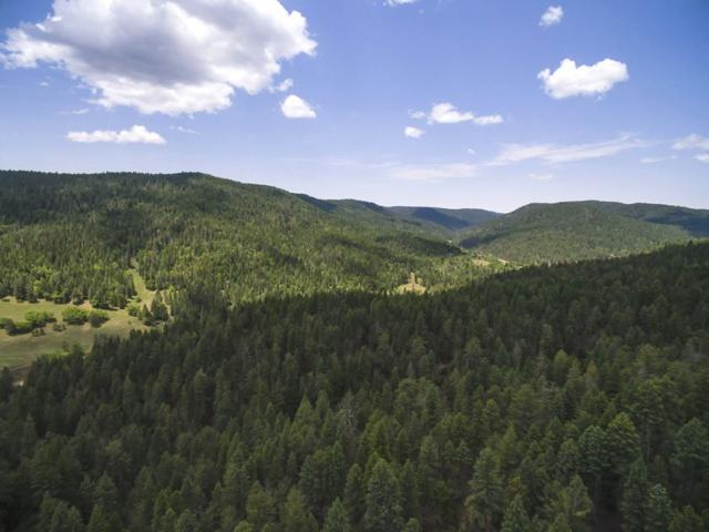 825 Cox Canyon Hwy, Cloudcroft, NM 88317 (MLS #158959) :: Assist-2-Sell Buyers and Sellers Preferred Realty