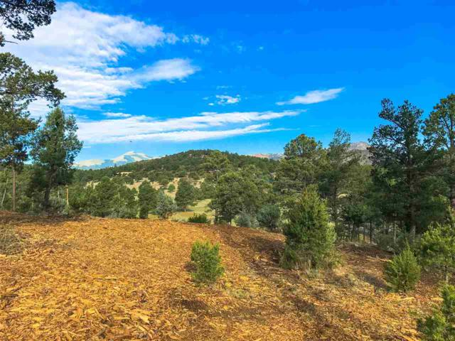 000 Fort Stanton Rd., Alto, NM 88312 (MLS #158968) :: Assist-2-Sell Buyers and Sellers Preferred Realty