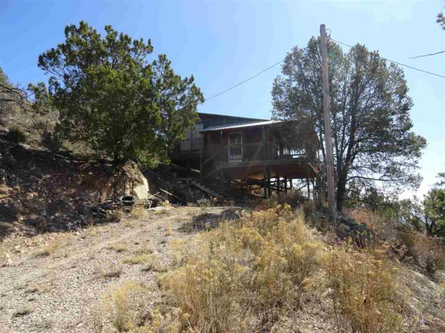 113 Sue Layne #1, Cloudcroft, NM 88317 (MLS #158999) :: Assist-2-Sell Buyers and Sellers Preferred Realty