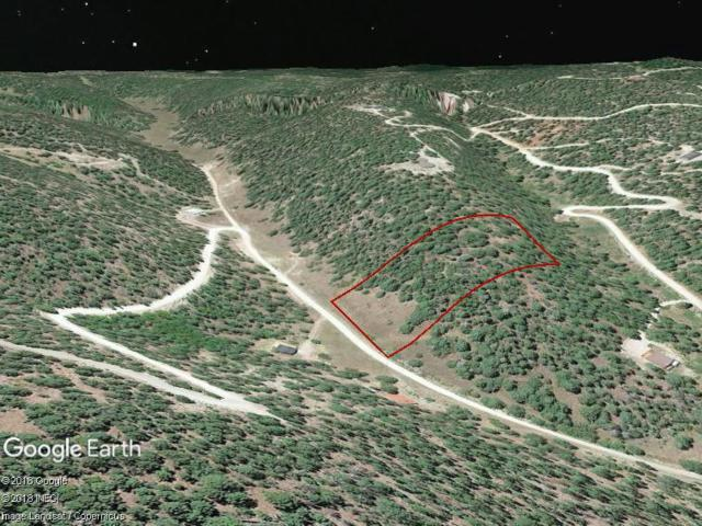 160 Young Canyon Rd, Cloudcroft, NM 88317 (MLS #159005) :: Assist-2-Sell Buyers and Sellers Preferred Realty