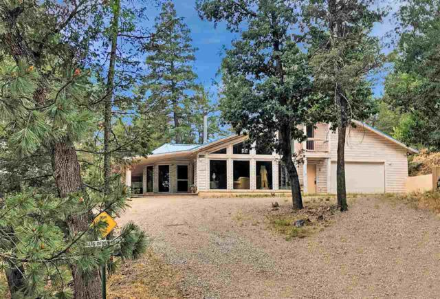 17 Mule Deer #1, Mayhill, NM 88339 (MLS #159014) :: Assist-2-Sell Buyers and Sellers Preferred Realty