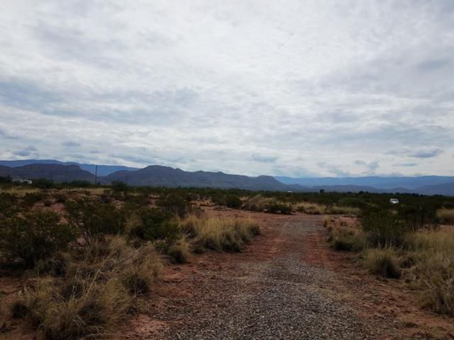 Rattlesnake Rd, Tularosa, NM 88352 (MLS #159032) :: Assist-2-Sell Buyers and Sellers Preferred Realty