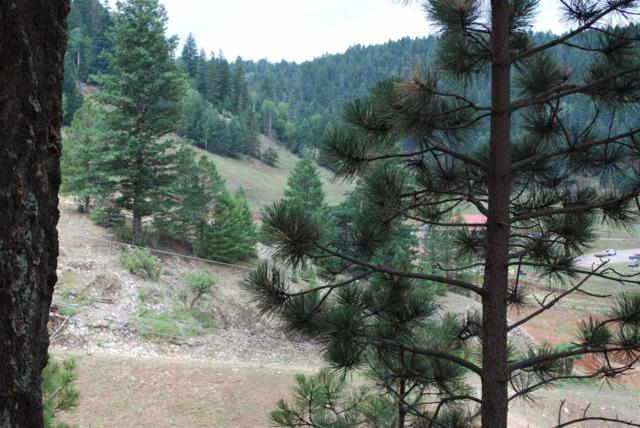 Moser Ranch Road, Cloudcroft, NM 88317 (MLS #159035) :: Assist-2-Sell Buyers and Sellers Preferred Realty
