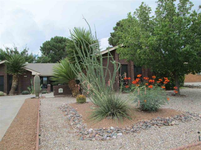 223 Eagle Dr, Alamogordo, NM 88310 (MLS #159058) :: Assist-2-Sell Buyers and Sellers Preferred Realty