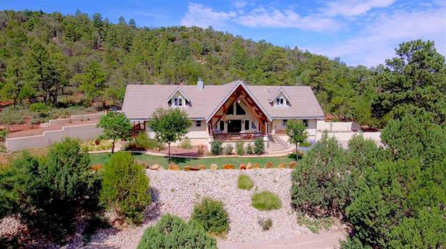 30 Peacefull Valley Dr, High Rolls Mountain Park, NM 88325 (MLS #159115) :: Assist-2-Sell Buyers and Sellers Preferred Realty