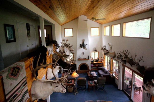 12 Iron Gate Pl, Mayhill, NM 88339 (MLS #159131) :: Assist-2-Sell Buyers and Sellers Preferred Realty
