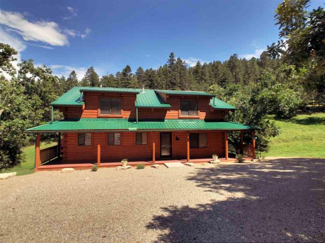 179 Trading Post Rd #1, Cloudcroft, NM 88317 (MLS #159248) :: Assist-2-Sell Buyers and Sellers Preferred Realty