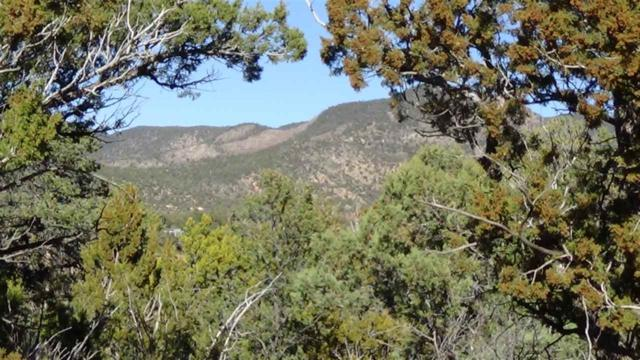 23 Mogollon Trl, High Rolls Mountain Park, NM 88325 (MLS #159359) :: Assist-2-Sell Buyers and Sellers Preferred Realty