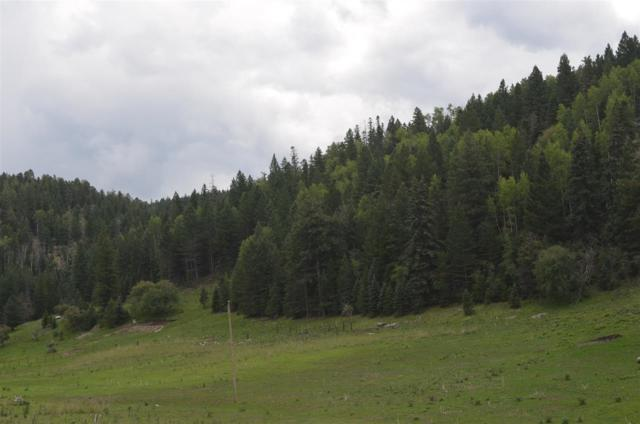 74 Pierce Canyon Rd, Cloudcroft, NM 88317 (MLS #159375) :: Assist-2-Sell Buyers and Sellers Preferred Realty