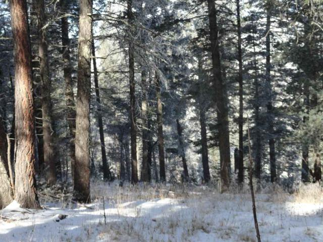 11 Sugar Maple, Cloudcroft, NM 88317 (MLS #159381) :: Assist-2-Sell Buyers and Sellers Preferred Realty