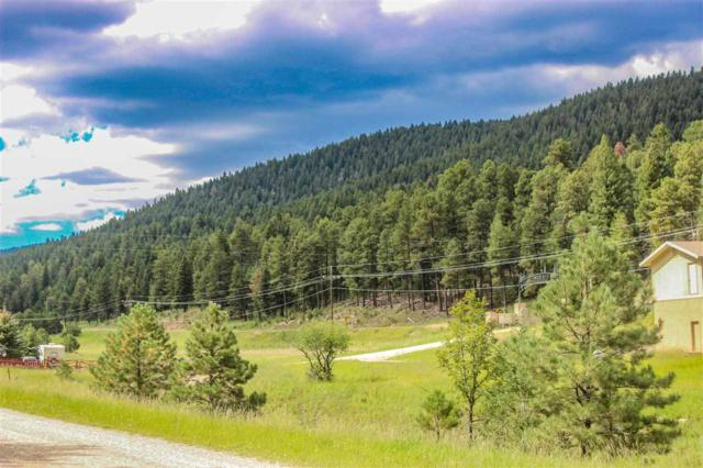 Address Not Published, Cloudcroft, NM 88317 (MLS #159386) :: Assist-2-Sell Buyers and Sellers Preferred Realty