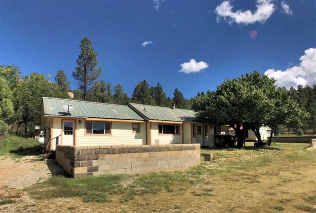 10 Milky Way, Mayhill, NM 88339 (MLS #159414) :: Assist-2-Sell Buyers and Sellers Preferred Realty