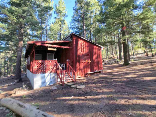 25 Skyline Dr, Cloudcroft, NM 88317 (MLS #159420) :: Assist-2-Sell Buyers and Sellers Preferred Realty