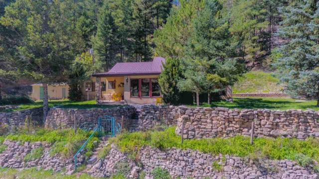 69 Wills Canyon Rd, Cloudcroft, NM 88317 (MLS #159500) :: Assist-2-Sell Buyers and Sellers Preferred Realty