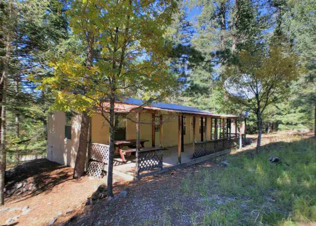 62 Oak Ridge Loop #2, Cloudcroft, NM 88317 (MLS #159567) :: Assist-2-Sell Buyers and Sellers Preferred Realty