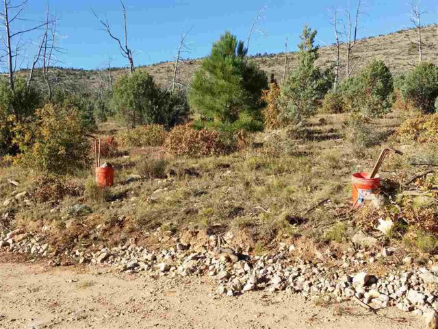 16 Springs Canyon Rd, Cloudcroft, NM 88317 (MLS #159597) :: Assist-2-Sell Buyers and Sellers Preferred Realty