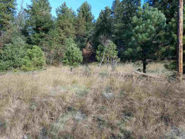 Address Not Published, Cloudcroft, NM 88317 (MLS #159618) :: Assist-2-Sell Buyers and Sellers Preferred Realty