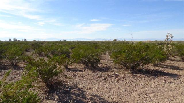 Old Spanish Trl, Alamogordo, NM 88310 (MLS #159619) :: Assist-2-Sell Buyers and Sellers Preferred Realty