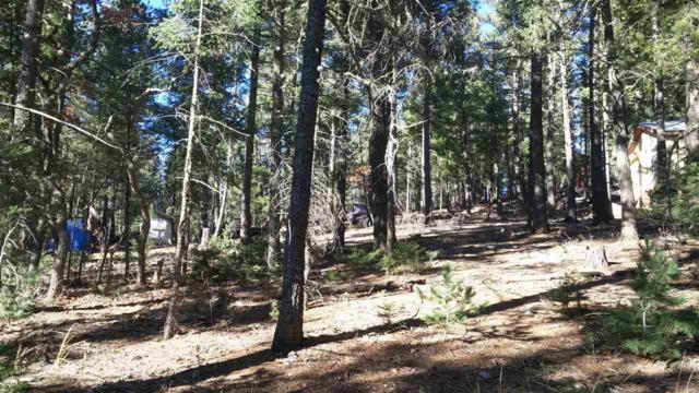 Aspen Tree Dr, Cloudcroft, NM 88317 (MLS #159620) :: Assist-2-Sell Buyers and Sellers Preferred Realty
