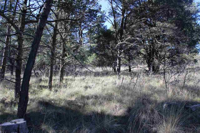 Lot 15c Timber Dr #3, Timberon, NM 88350 (MLS #159670) :: Assist-2-Sell Buyers and Sellers Preferred Realty