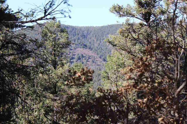 Lot 2+ Henry Summit Dr #5, Cloudcroft, NM 88317 (MLS #159671) :: Assist-2-Sell Buyers and Sellers Preferred Realty