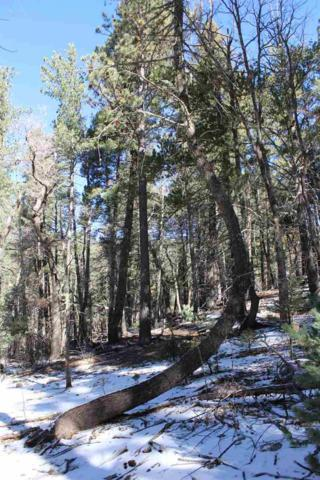 Lot 18 Canyon View Dr #6, Cloudcroft, NM 88317 (MLS #159672) :: Assist-2-Sell Buyers and Sellers Preferred Realty