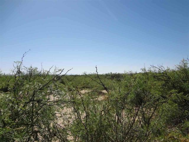 5 acres Desert Air Rd, Alamogordo, NM 88310 (MLS #159714) :: Assist-2-Sell Buyers and Sellers Preferred Realty