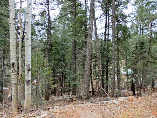475 Beaver Ave #3, Cloudcroft, NM 88317 (MLS #159725) :: Assist-2-Sell Buyers and Sellers Preferred Realty