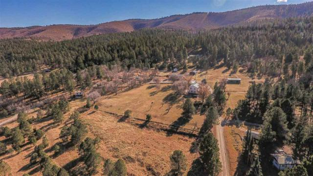 19 Senior Circle W Dr #0, Mayhill, NM 88339 (MLS #159732) :: Assist-2-Sell Buyers and Sellers Preferred Realty