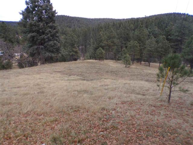 Cloudcroft, NM 88317 :: Assist-2-Sell Buyers and Sellers Preferred Realty
