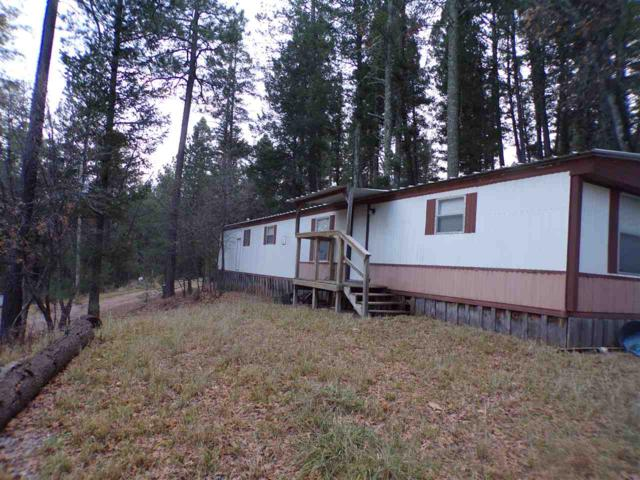 42 Cowan Rd, Mayhill, NM 88339 (MLS #159764) :: Assist-2-Sell Buyers and Sellers Preferred Realty
