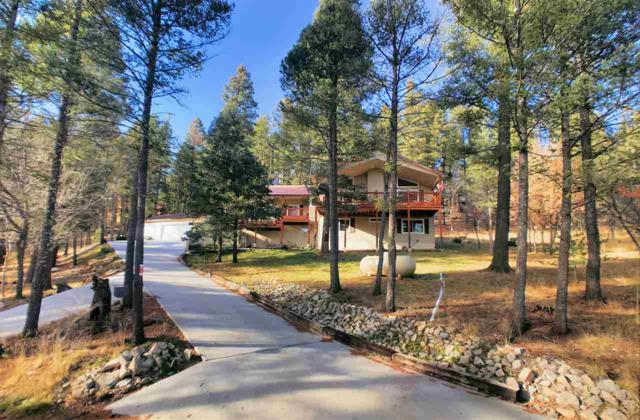94 Silver Fox Trl #2, Mayhill, NM 88339 (MLS #159786) :: Assist-2-Sell Buyers and Sellers Preferred Realty