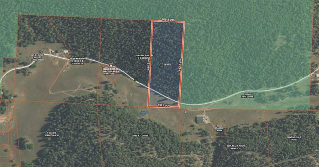 94 Pierce Canyon Rd, Cloudcroft, NM 88317 (MLS #159788) :: Assist-2-Sell Buyers and Sellers Preferred Realty