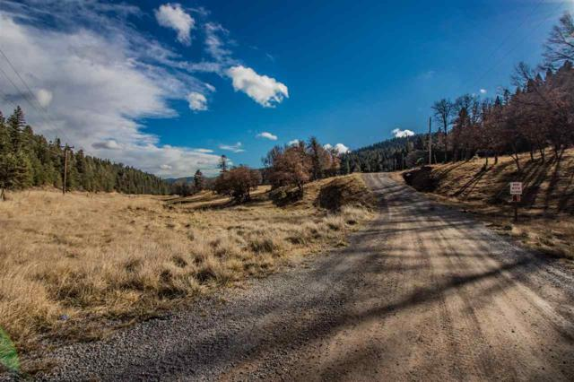 Lot 11 Billie Jean Way, Cloudcroft, NM 88317 (MLS #159828) :: Assist-2-Sell Buyers and Sellers Preferred Realty