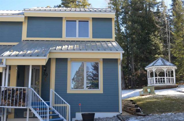 30 Switch Back Ln, Cloudcroft, NM 88317 (MLS #159839) :: Assist-2-Sell Buyers and Sellers Preferred Realty