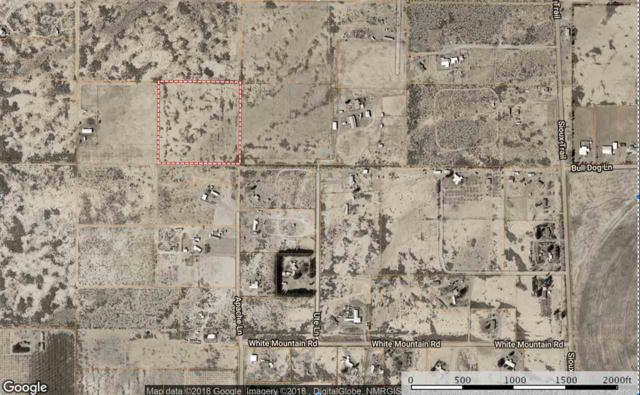 000 Address Not Published, Tularosa, NM 88352 (MLS #159850) :: Assist-2-Sell Buyers and Sellers Preferred Realty