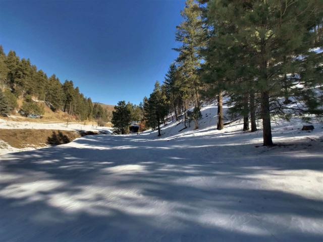 76 Wills Canyon Rd, Cloudcroft, NM 88317 (MLS #159889) :: Assist-2-Sell Buyers and Sellers Preferred Realty