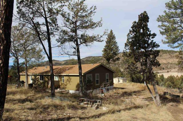1836 Rio Penasco Rd, Mayhill, NM 88339 (MLS #159959) :: Assist-2-Sell Buyers and Sellers Preferred Realty