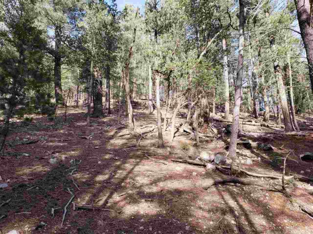 Address Not Published, Cloudcroft, NM 88317 (MLS #159965) :: Assist-2-Sell Buyers and Sellers Preferred Realty