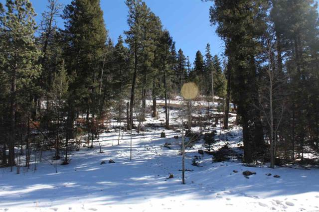 Lot 4 Big Bear Way Bp1, Cloudcroft, NM 88317 (MLS #159977) :: Assist-2-Sell Buyers and Sellers Preferred Realty