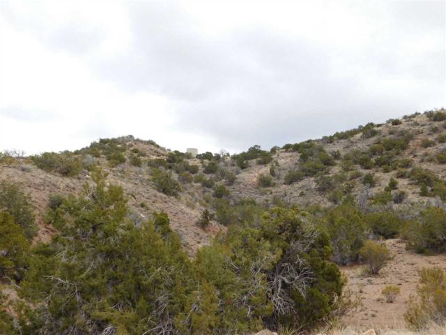 Fresnal Canyon Rd, La Luz, NM 88337 (MLS #159985) :: Assist-2-Sell Buyers and Sellers Preferred Realty