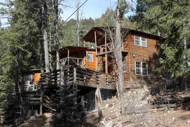 11 Vine St Qa, Cloudcroft, NM 88317 (MLS #160005) :: Assist-2-Sell Buyers and Sellers Preferred Realty