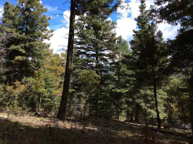 7 Polaris Point, Cloudcroft, NM 88317 (MLS #160006) :: Assist-2-Sell Buyers and Sellers Preferred Realty