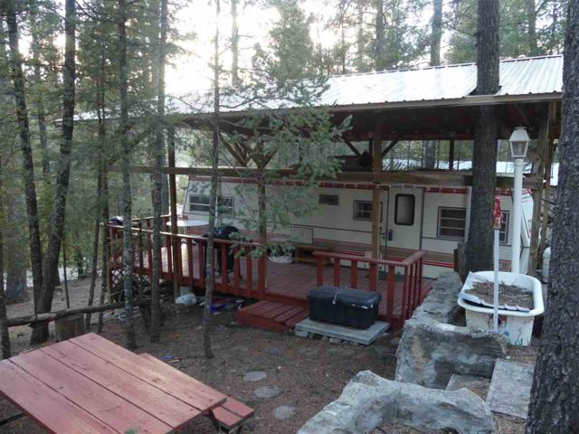 66 Wildwood #3, Cloudcroft, NM 88317 (MLS #160045) :: Assist-2-Sell Buyers and Sellers Preferred Realty